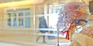 universidades que ofrecen becas para estudiar medicina